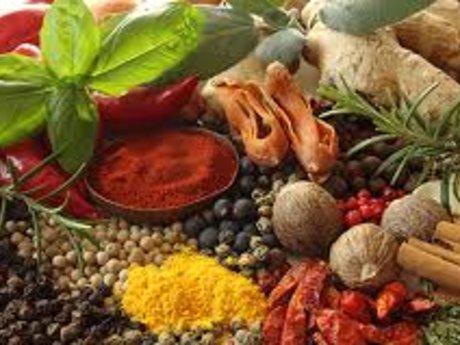 5 ebooks on herbs and raw food