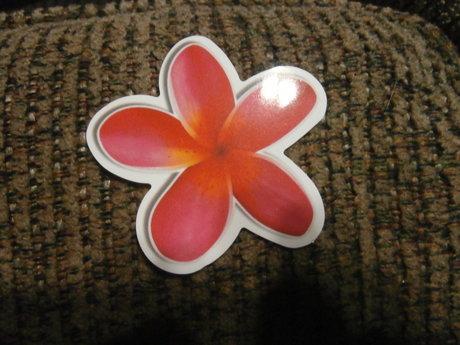Pretty Flower Sticker