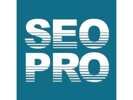 Pro SEO Service