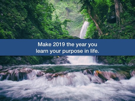 Learn your purpose in 2019