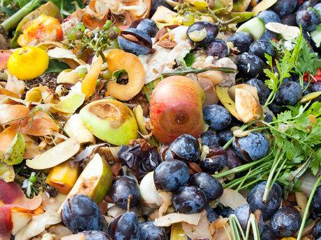 30 min Compost consult