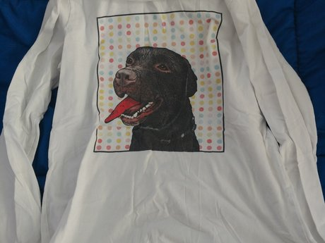 Long Sleeves Dog Shirt - Gentl Used