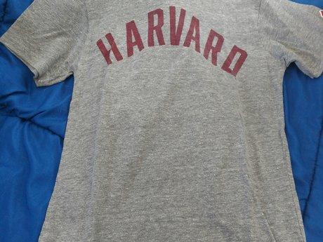Harvard - T-shirt - Small - Used
