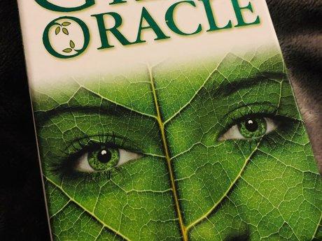 1 Card Oracle Card Reading
