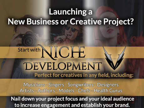 Niche Development & Target Audience