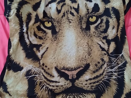 Tiger Shirt - Medium