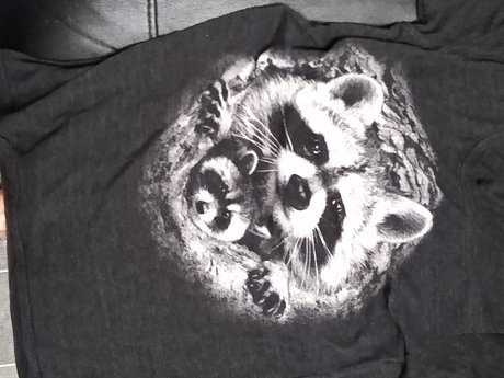 Raccoon T-shirt - Large - Gentlysed