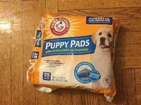 20 doggy pee pads