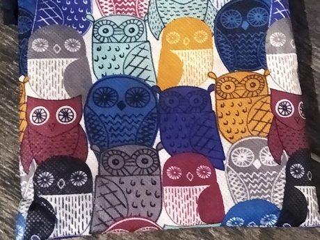 Thirty One Owls Mini Bag