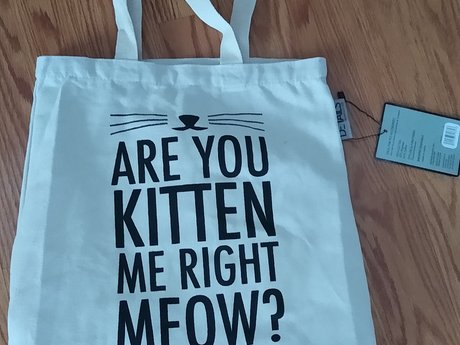 Are You Kitten Me Right Now Canvas