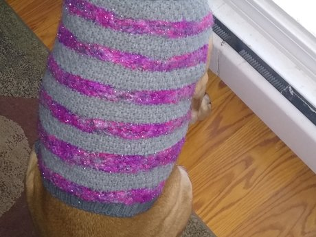 Dog Sweater - Large