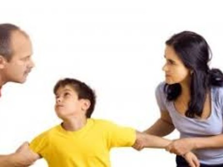 Co-parenting  Consultation