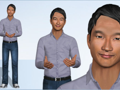 Virtualization consultant