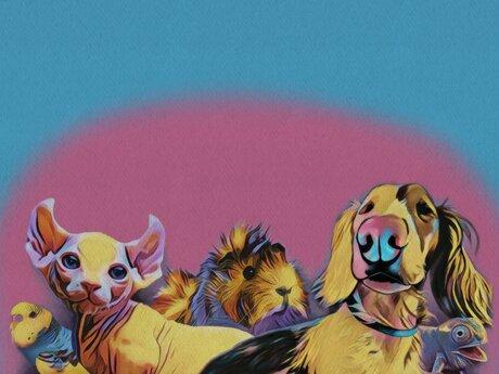 Pet Digital PaintingPortrait
