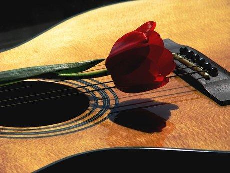 Serenader