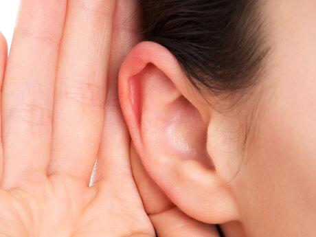 A listing ear