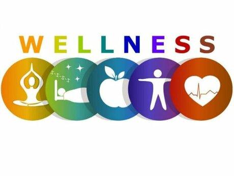 Personalized Wellness Plan