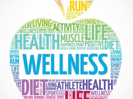 12 wk online diet/fitness coaching