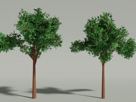Tree (3D Model Blender)