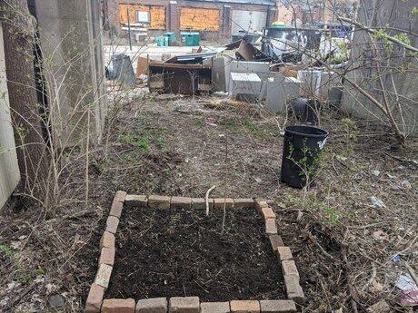 Guerilla/Urban Gardening Advice