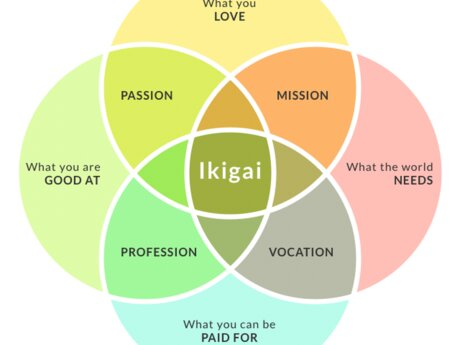 Shaman : Find your Ikigai