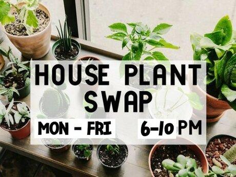 House Plant Swap