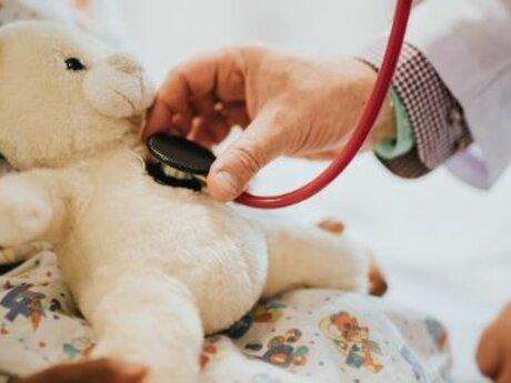 Pet Toy Hospital
