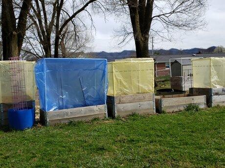 Raised Bed Gardening Consultation