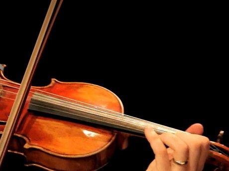 15 minute violin or viola lesson.
