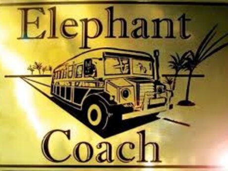 Coach Elephant Support