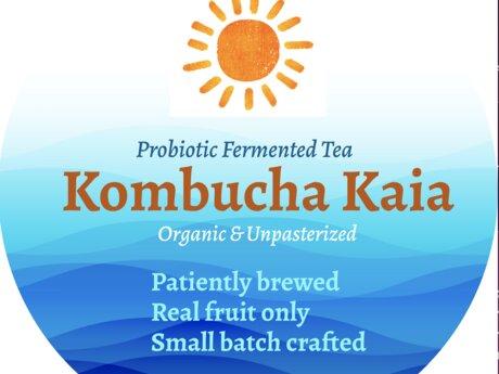 Kombucha Making!
