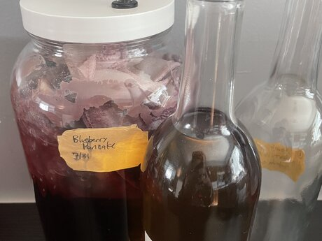 Winemaking Consult - 30-45 min