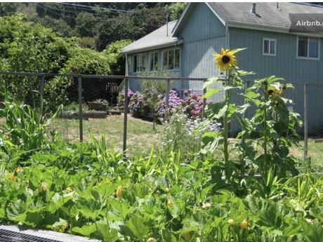 Gardening, landscaping, labor