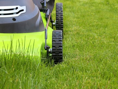 Expert Lawn/Garden Equipment Repair