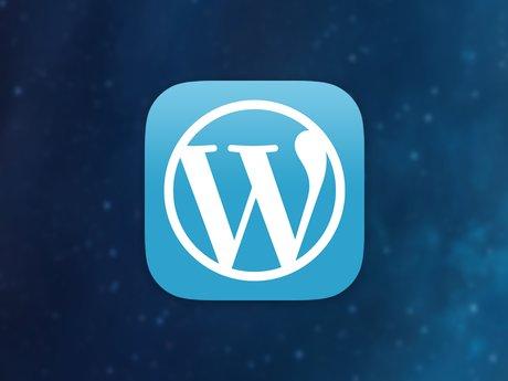Wordpress Set-Up