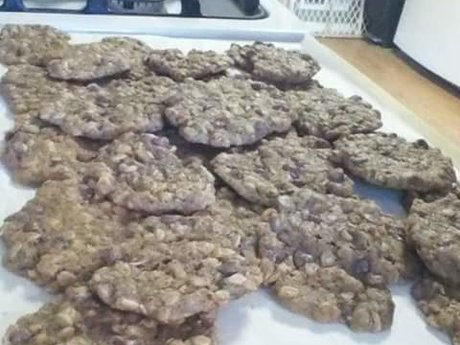 Oatmeal Choco Chip Lactation Cookie