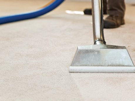 Carpet or tile cleaning
