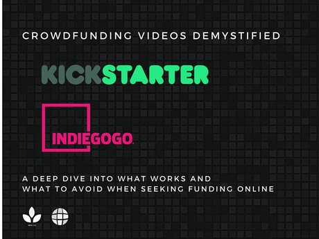 Crowdfunding Video Consulting