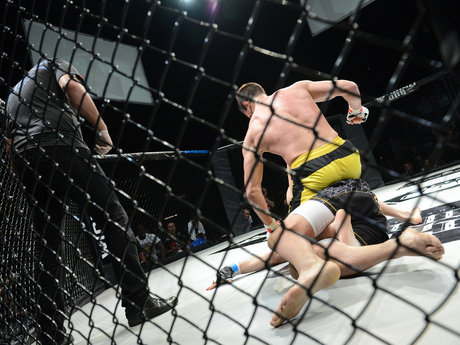 MMA analytics/betting advice