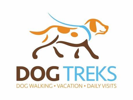 Dog Walking & Training