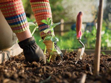 2 Hours of Gardening