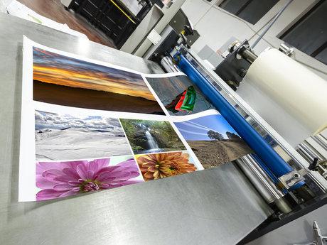 Print, design, marketing.