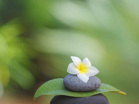 Personalized Meditation for your li
