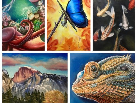 Fine Art Oil Paintings