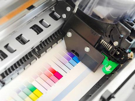 Customized Vinyl Graphics
