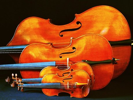 Violin, Viola Or Cello Adjustment