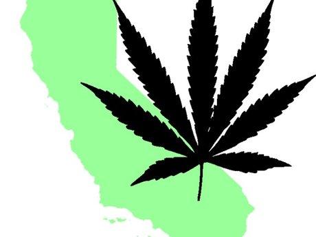 Medical marijuana  consultant