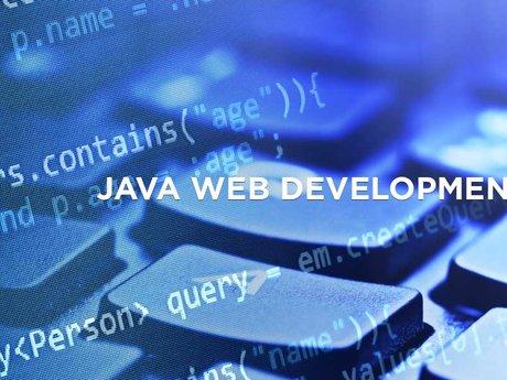 Programming/Tech Support