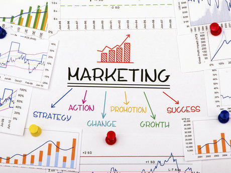 Start-Up Marketing Consultations