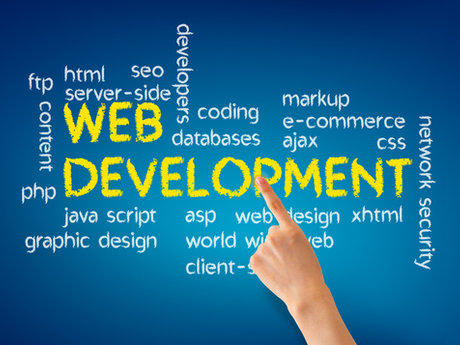 Web Design Lesson or Consultation